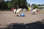 Ponyfußball Tag der offenen Tür 2013
